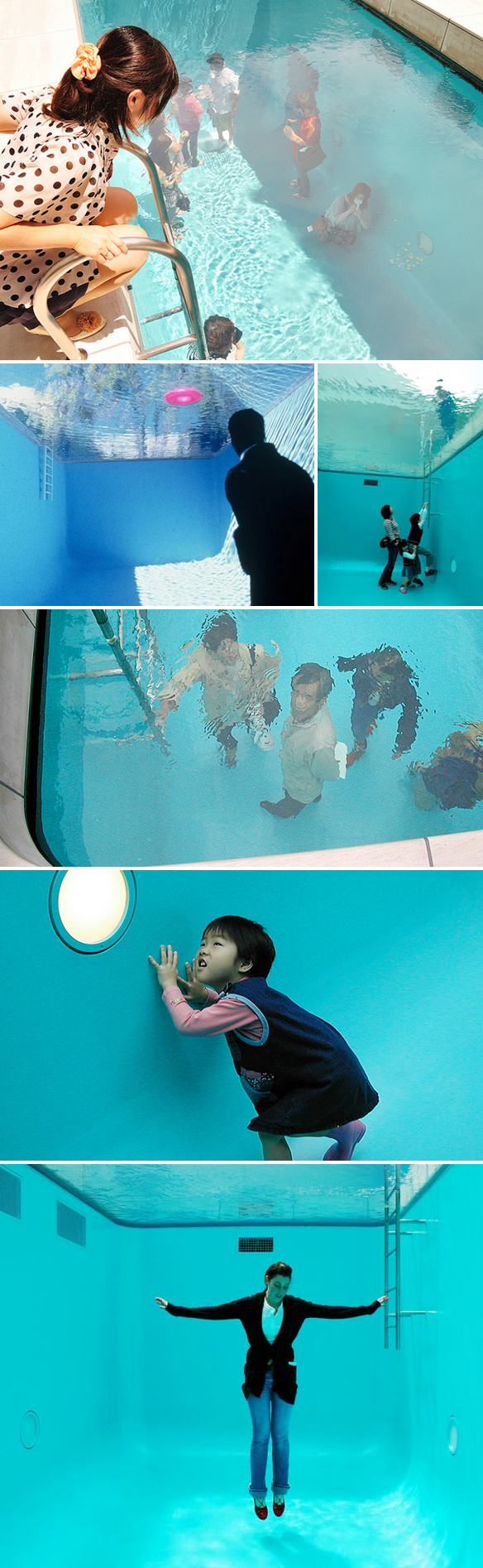 Swimming Pool Art : The jealous curator curated contemporary art