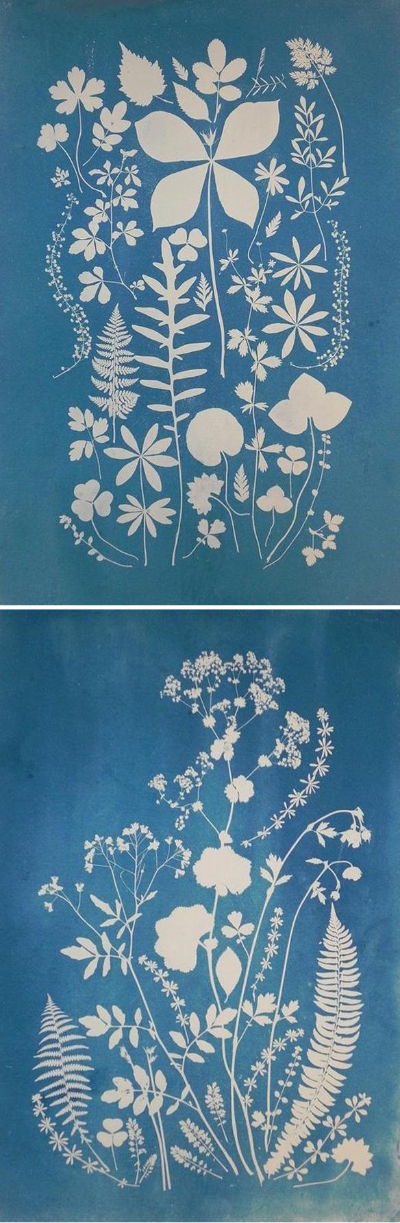 anna-bellmann_blue